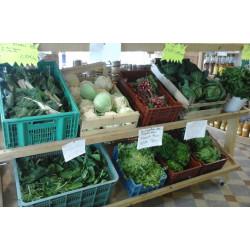 Légumes bio frais et de saison !