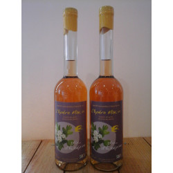 Vin apéritif de plantes ou fleurs