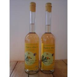 Vin de Pissenlit Apéro Malin (50cl)