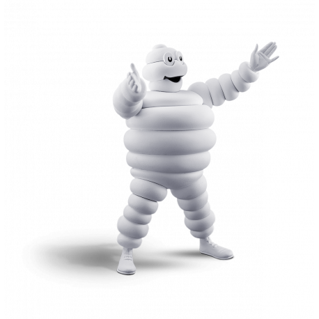 PROMO : Hiver Michelin au Garage Lemoine