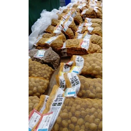 Plants de pommes de terre - Coopérative Agricole
