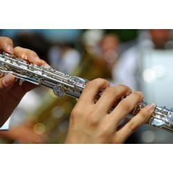 Cours de flûte à Luzy
